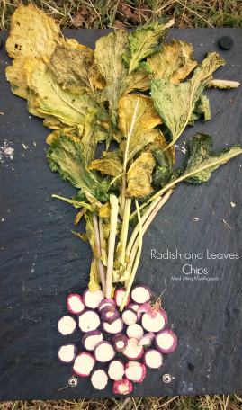 Radish and Leaves Chips Mind Lifting Mouthgasms