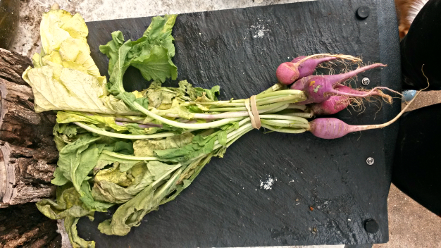 Raw Radish Leaves and Chips