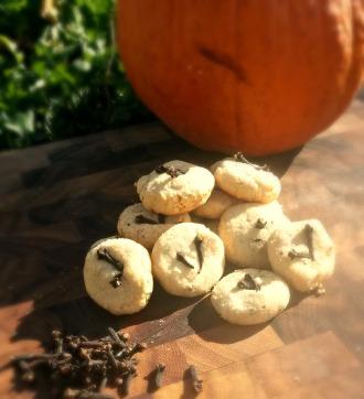 Cocobutter Pumpkin Cookies
